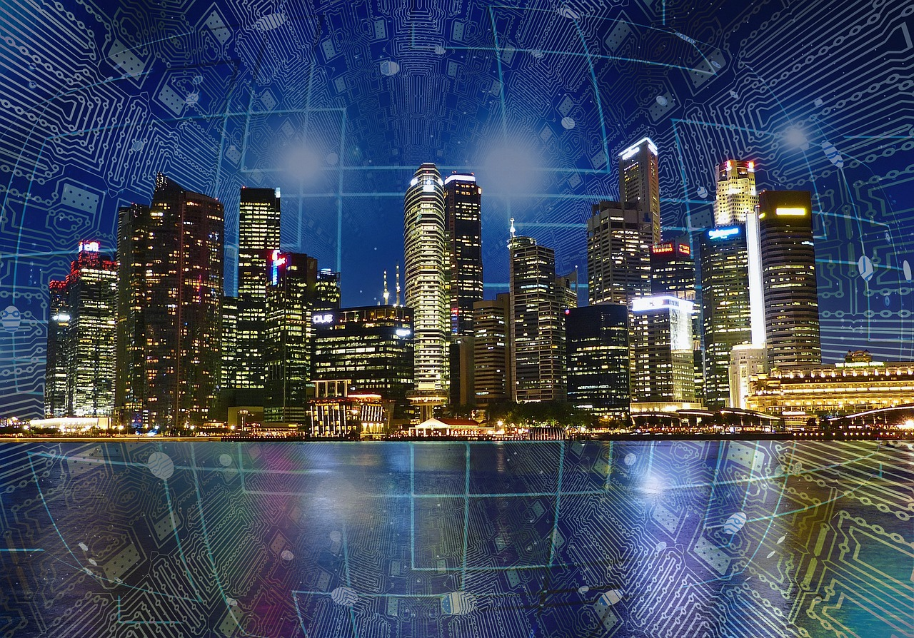 What are Smart Grids?