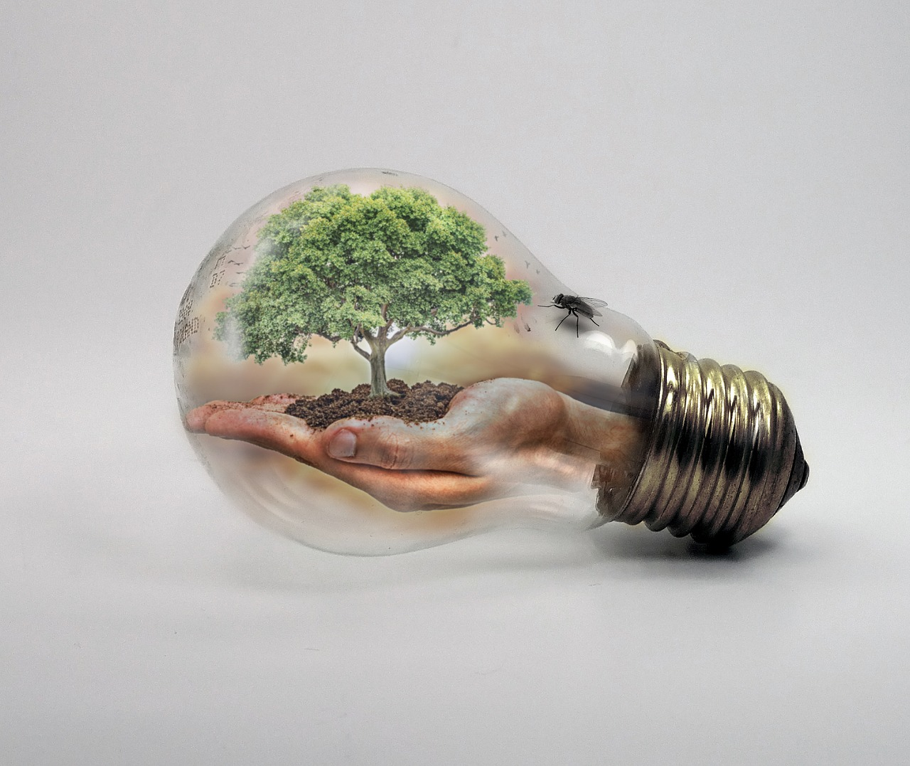 Explain the effects of climate change innovation