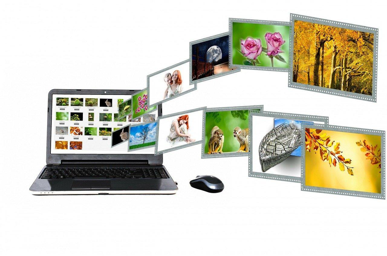 Computer vision vs image processing